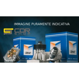 PA939 GRAF POMPA ACQUA VW GOLF V 1.4 03-